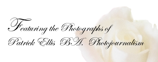 featuring the photography of patrick ellis ba photojournalism